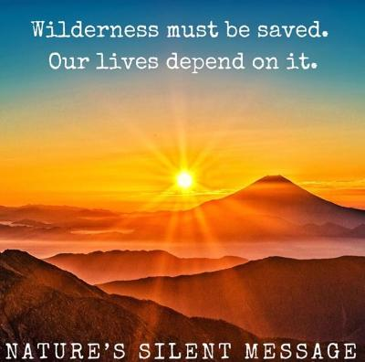 Natures Silent Secret